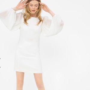 New - CHIFFON SLEEVE WHITE SHIFT DRESS -TSA